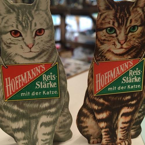 hoffmann's cat
